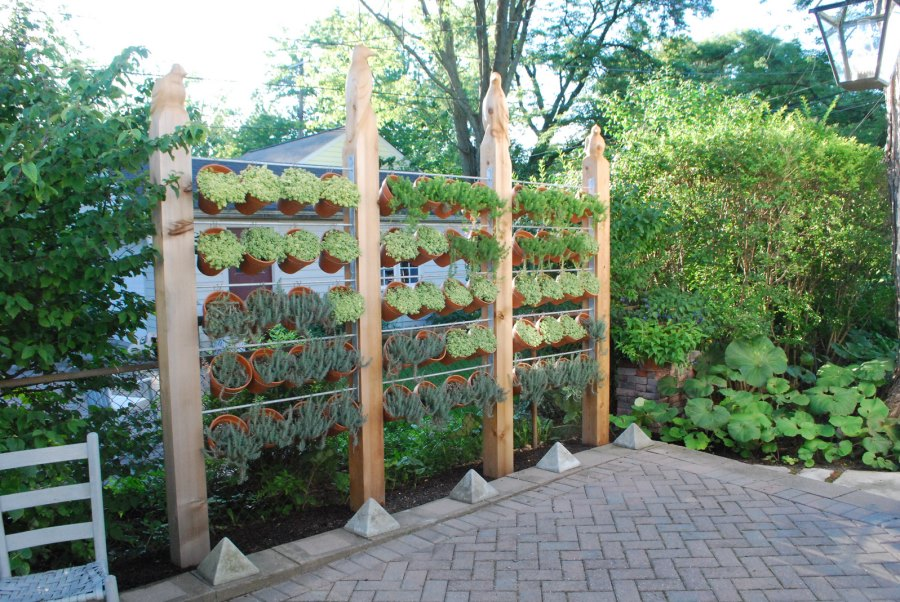 pot plants fence ideas