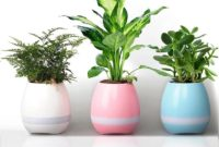 Ceramics Style Terrace Pots