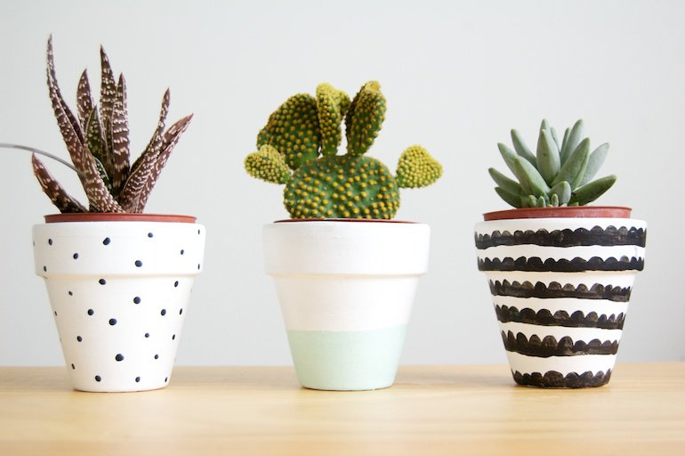 Simple Plant Pots Design