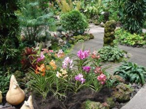 best orchid style garden