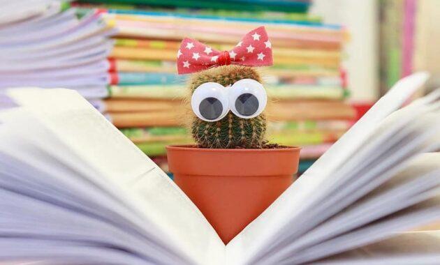 cactus book flower pot read scratchy knowledge literature education