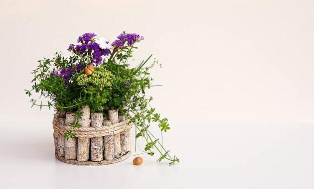 flower arrangement wooden flower pot decoration flower plant leaf butterfly snail floral
