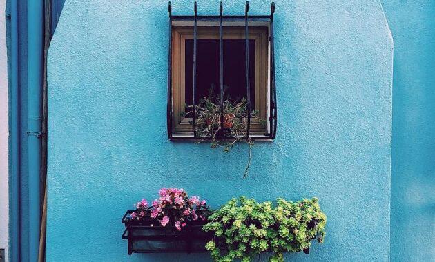 flowers basket pots window bars blue wall house