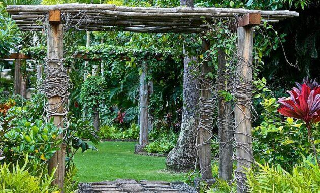 garden retreat relaxation green backyard yard grass comfortable private