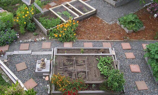 garden urban farming organic gardening vegetable backyard plant urban farming