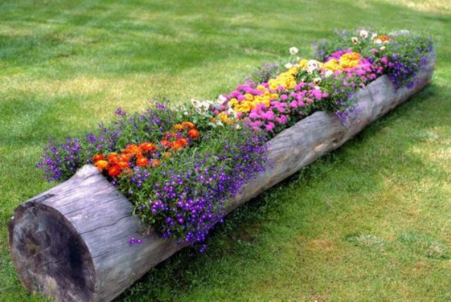 log garden bed ideas