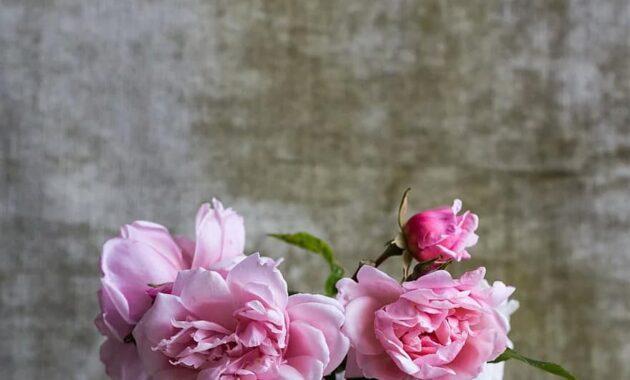 roses bunch bouquet flower floral gift vase pot decorative