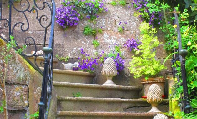 staircase old flowers flower pots summer flower pot nature decoration