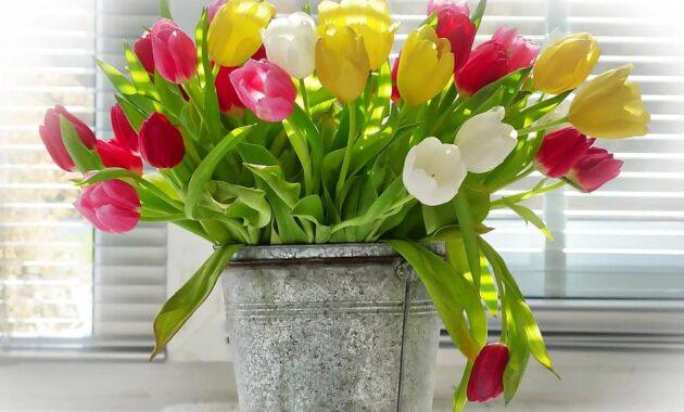 vase flower bouquet pot ornament tulips