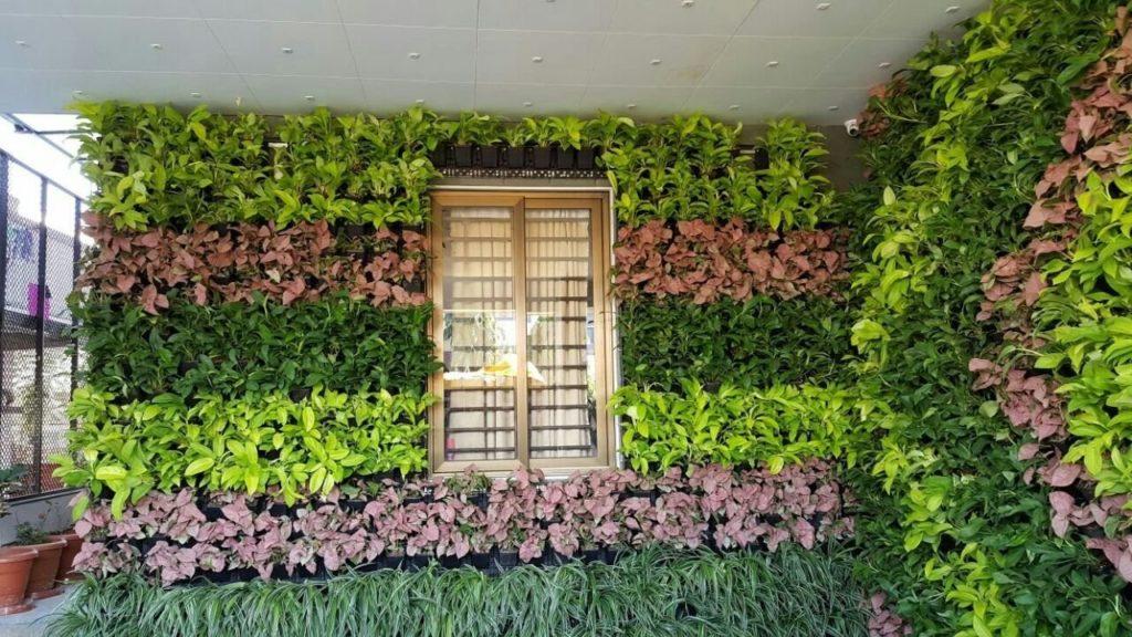 vertical garden front wall