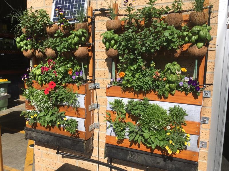 vertical garden wall idea