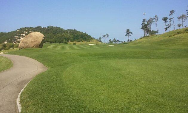 golf course golf course green grass golfing field outdoor recreation