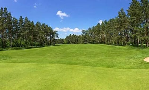 golf green fairway forest trees golf club worpswede golf course