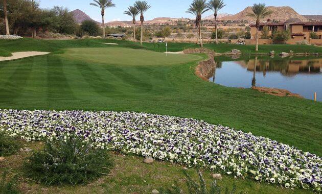 golf green golfing putting putt