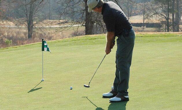 golfer putting green golf sport course grass leisure club