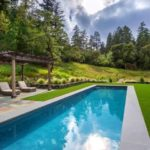 Natural Swimming Pool Designs For Family Backyard