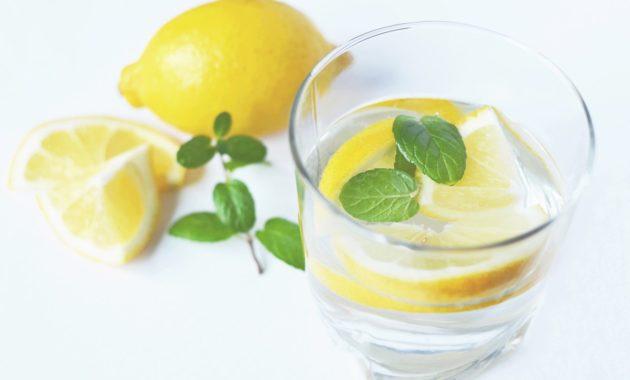 Obat Herbal Penyakit Ginjal