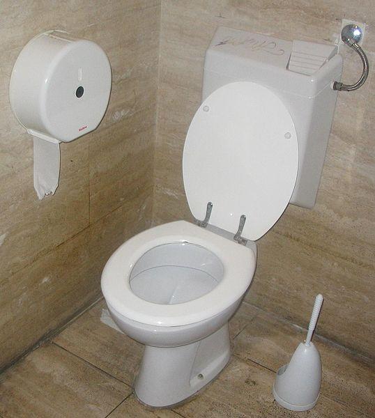 bathroom flusher