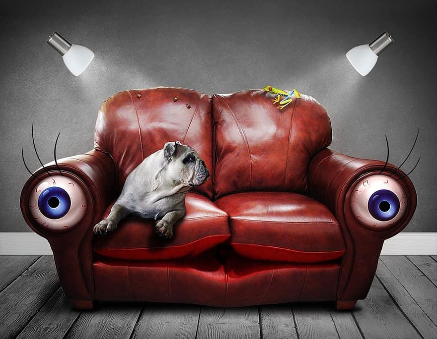 sofa couch surreal eyes dog art artificial dream perception 1