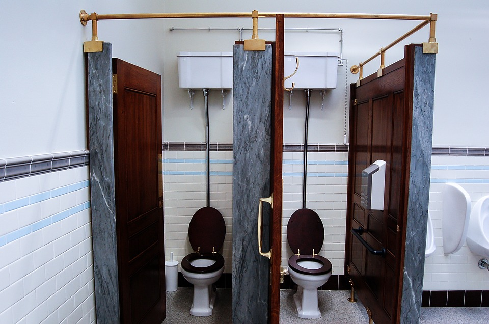 toilet design ideas