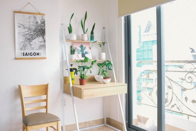 Beatiful minimalist indoor garden