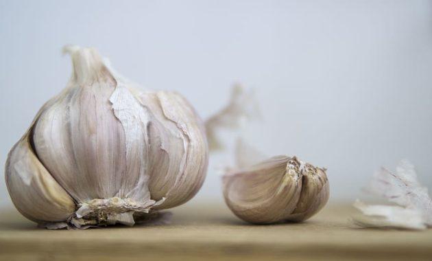 Obat Herbal Kolesterol - Bawang Putih