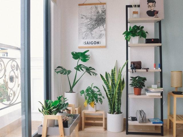 corner garden for minimalist house