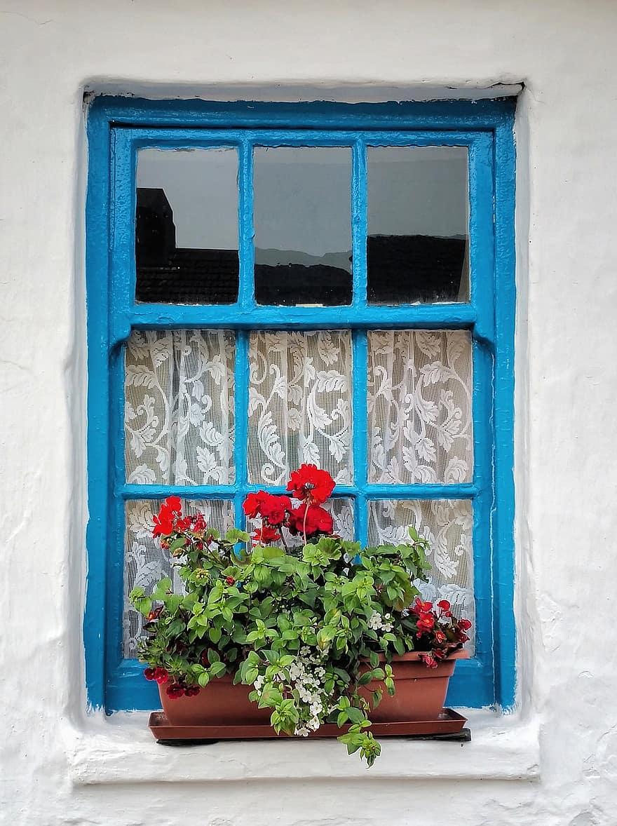 old irish cottage window planter flower decoration geranium ivy