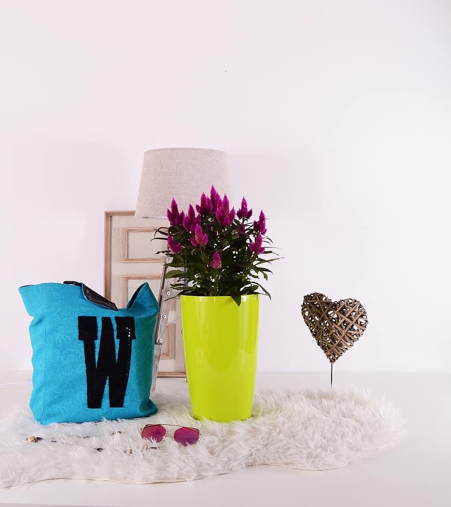 plants flowerpots green grow gardening pot color colorful cute