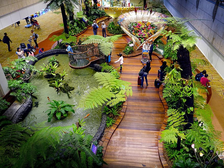 singapore changi airport tourists terminal travelling departure hall indoor flight greenery