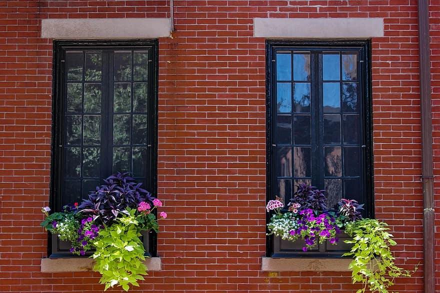 window brick planter flowers green purple reflection apartment wall