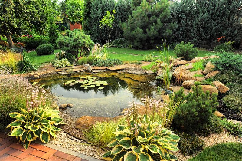 Amazing Fish Pond Design For Backyard Ideas