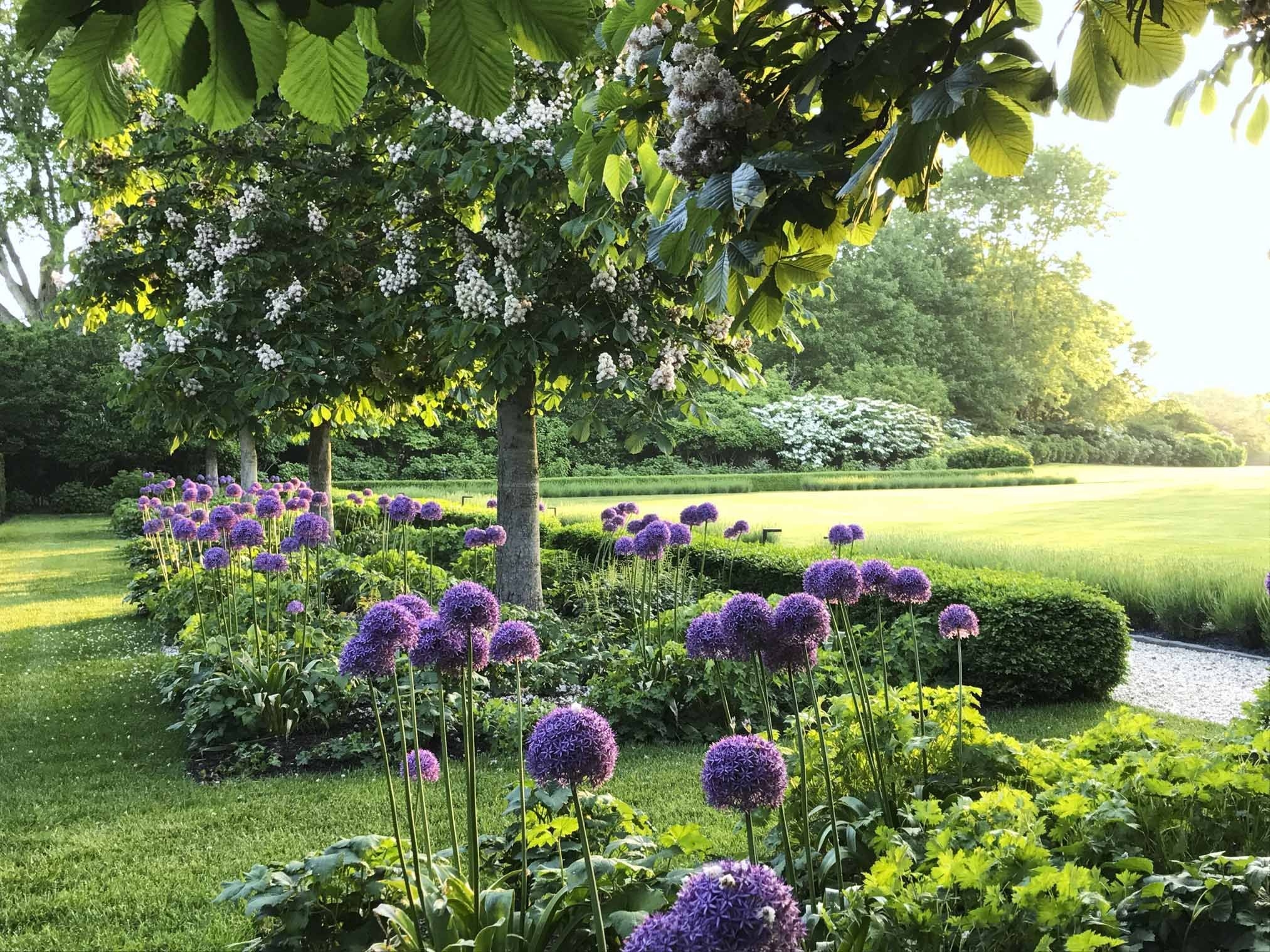 Beautiful Flower Ideas for Natural Landscaping
