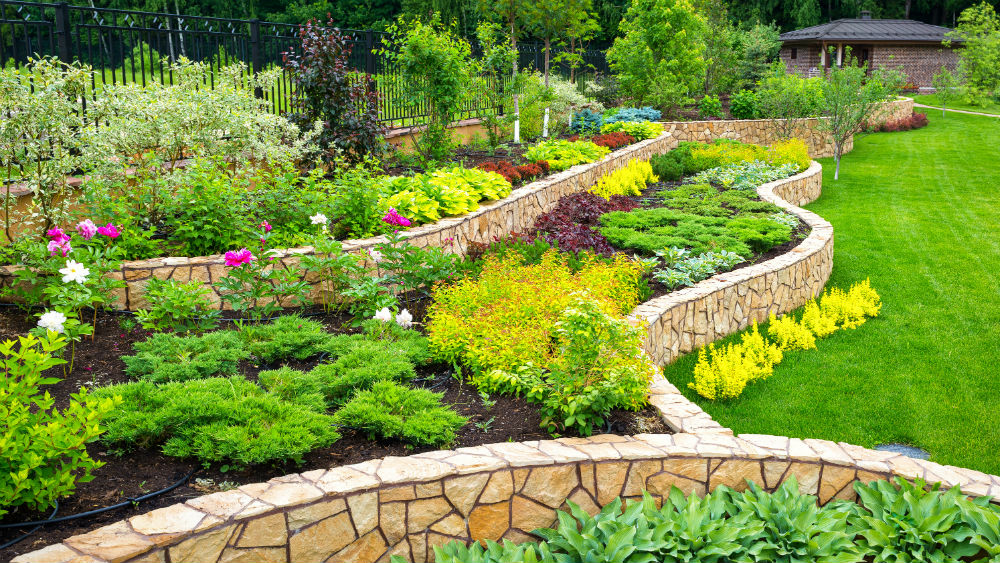 Georgeous Landscaping ideas with different plant