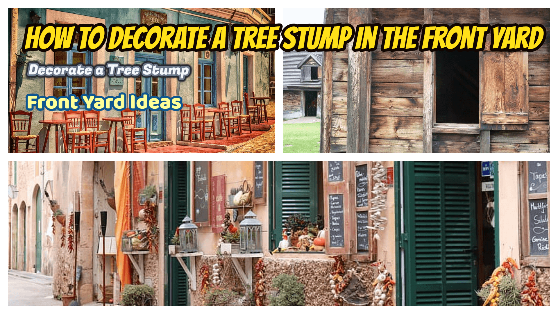How to Decorate a Tree Stump in the Front Yard tips