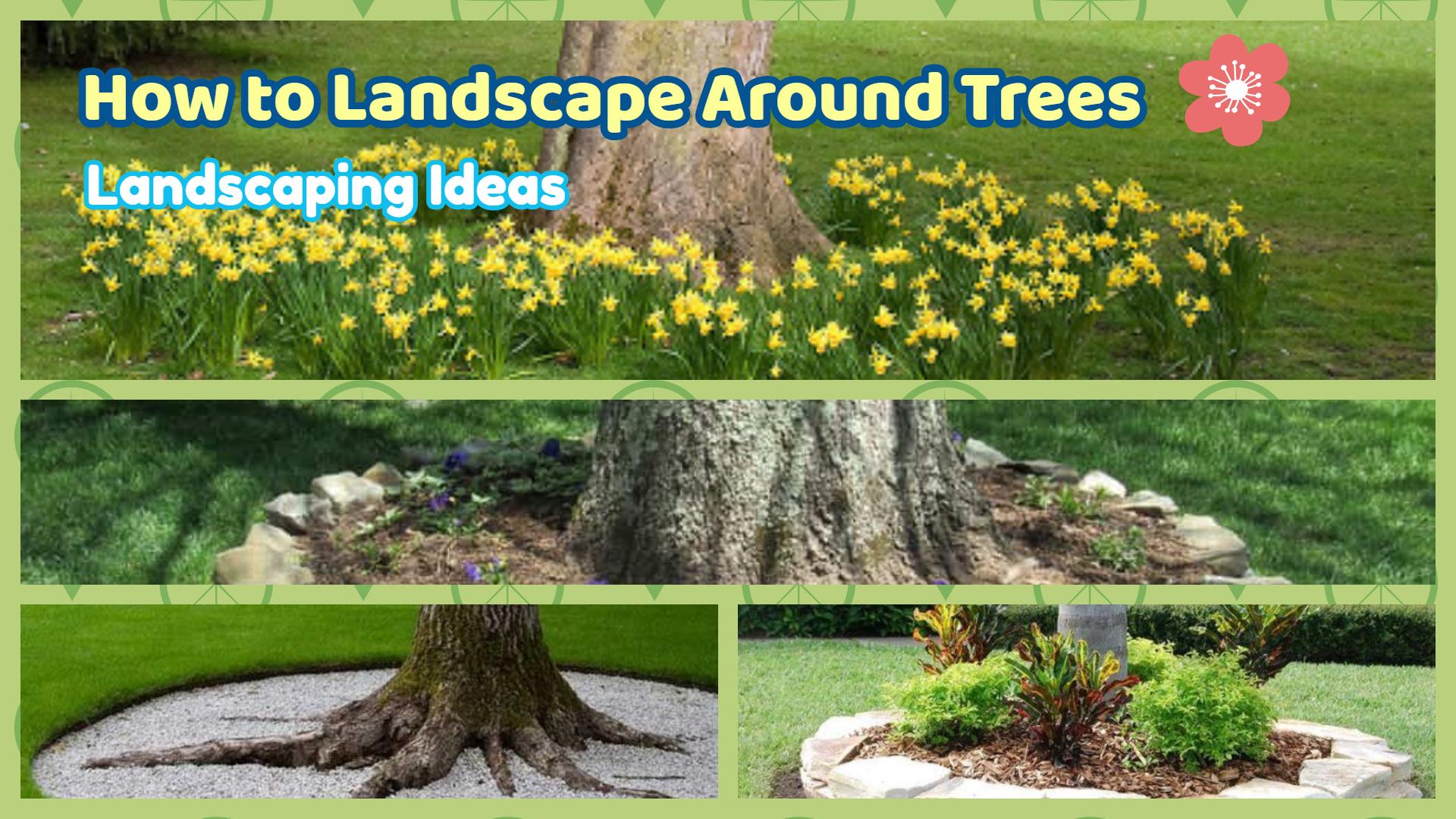 How to Landscape Around Trees