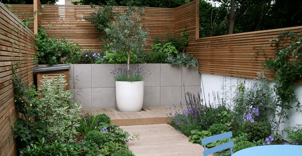 Minimalist garden design with plants