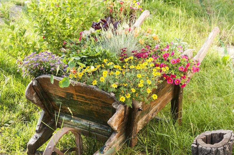 Outdoor planter ideas