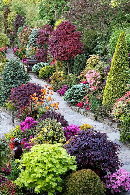 bautiful inspiration for garden flowering