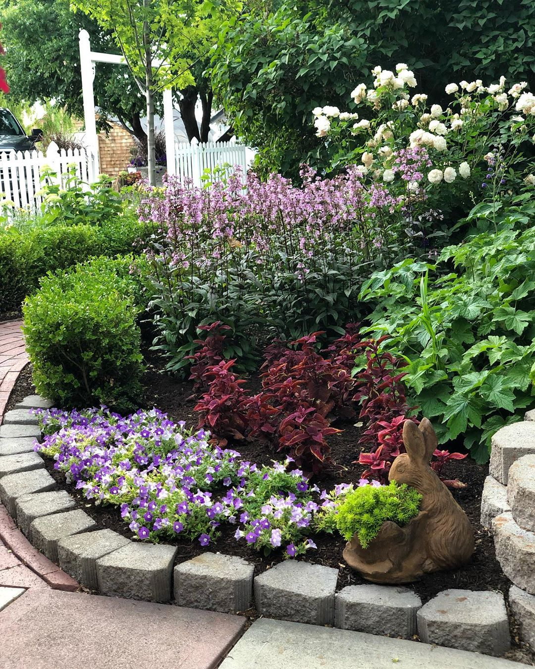 beautiful garden shrubs