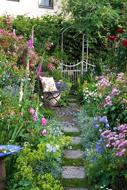 flower for simple garden