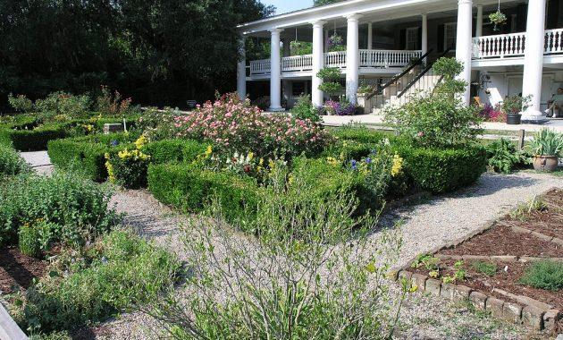 front yard ideas no grass inspiration