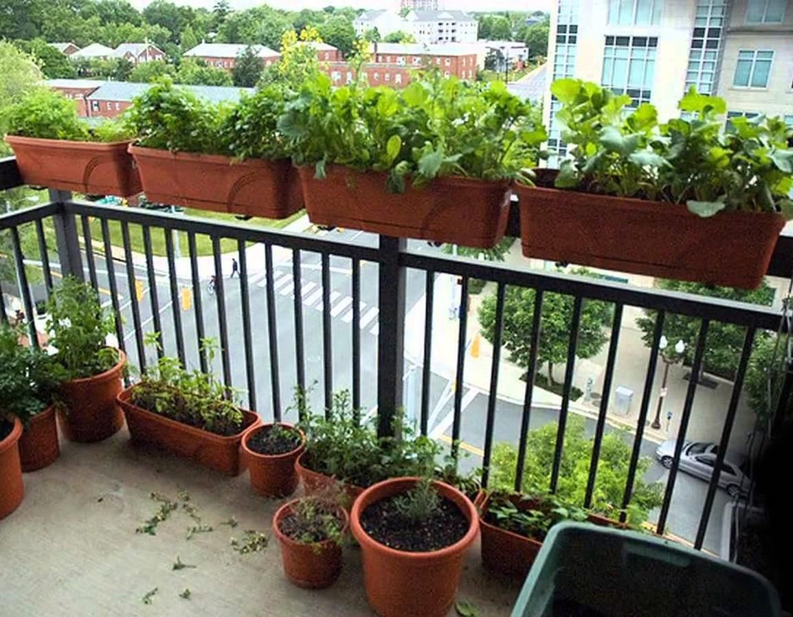 garden ideas for small apartment