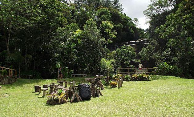 green tree landscaping ideas