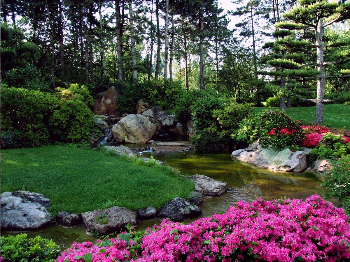 backyard garden design ideas pictures