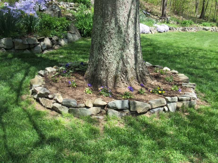 landscaping around tree with rock decoration