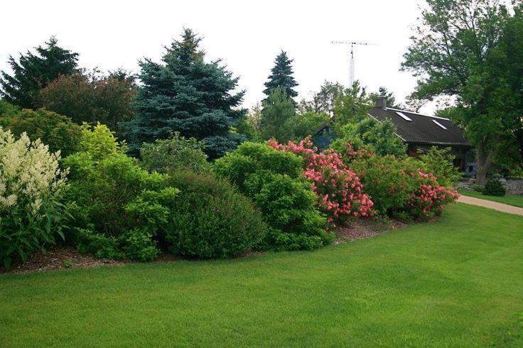 minimalist house yard ideas