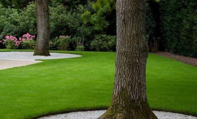 minimalist landscape around tree ideas