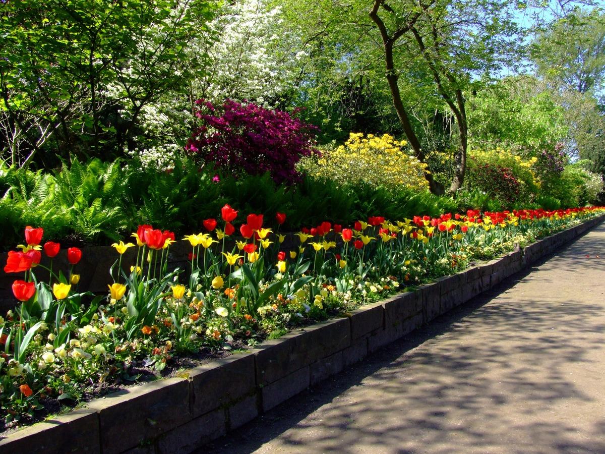 backyard garden lover with flower design