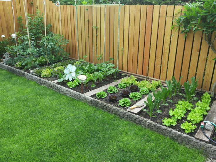 simple landscaping house yard ideas